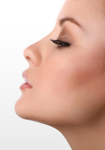 Nose-Reshapinglg(1)